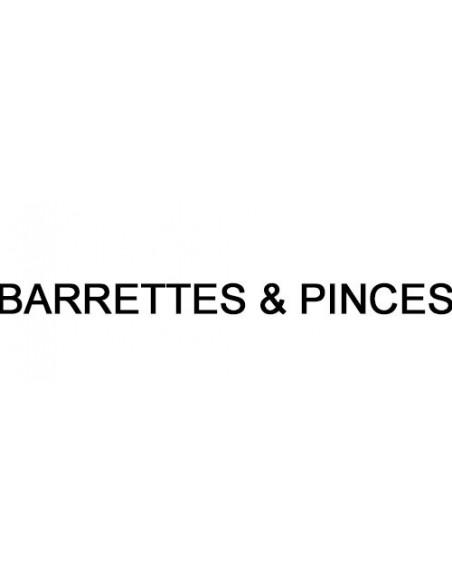Barrettes & Pinces